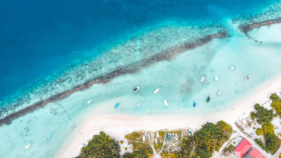 Thulusdhoo-Island-Maldives-18.jpg.optimal