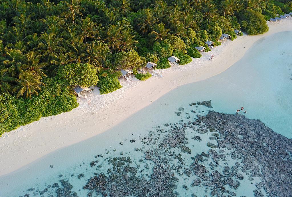 Plumeria Maldives3