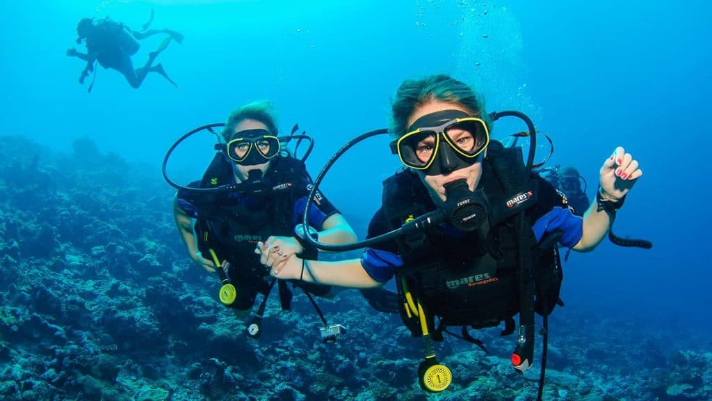 One of the most popular activities is the discovery of beautiful and marvelous ocean by diving activities.