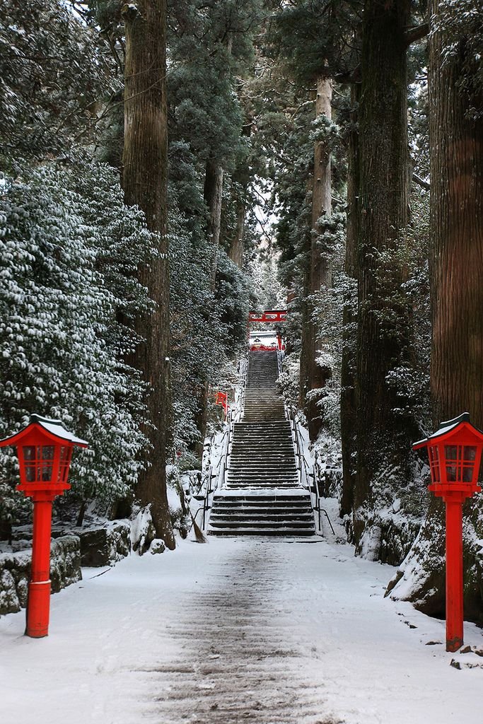 Winter in Hakone Shrine, Kanagawa, Japan