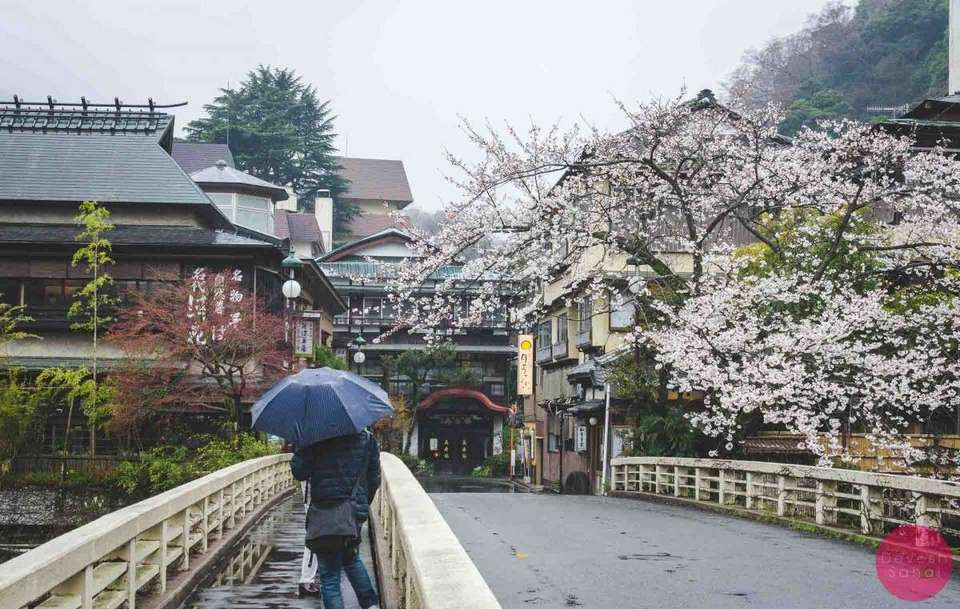Hakone in Spring season