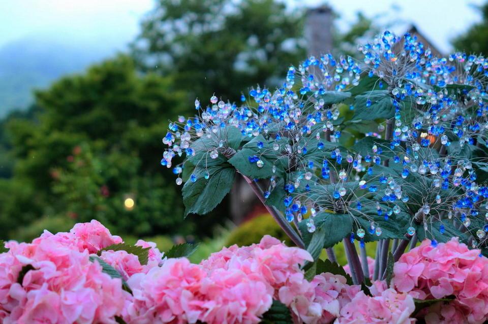 Hakone Glass Nomori Museum,hakone travel blog,hakone travel guide,hakone blog,2 days in hakone,hakone 2 day itinerary (1)