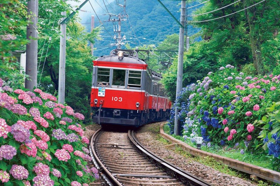 Hakone Tozan Railway (1) | hakone travel blog