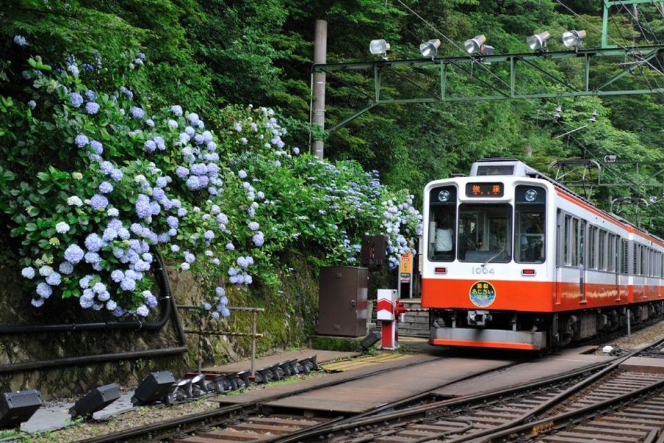 Hakone Tozan Railway (1)