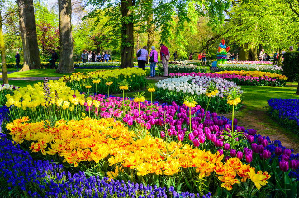 flower-power-where-to-go-for-spring-in-amsterdam