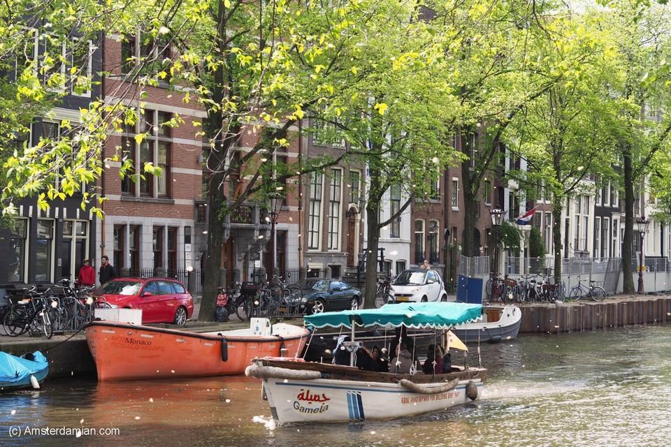 summer amsterdam blog,amsterdam travel blog,amsterdam travel guide blog,amsterdam city guide