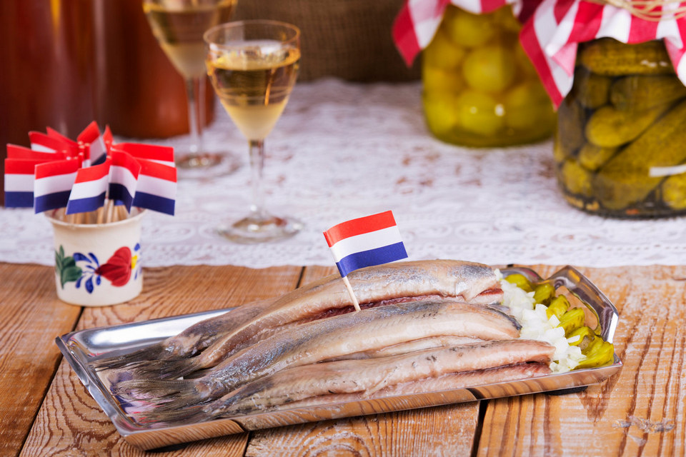 dutch-herring