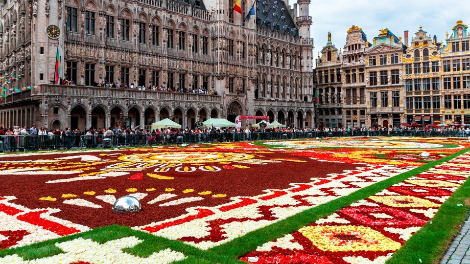 Brussels carpet of flowers at Grand Place Square