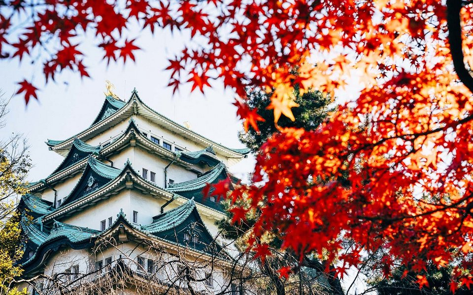 nagoya-castle-autumn-japan-NAGOYA0717