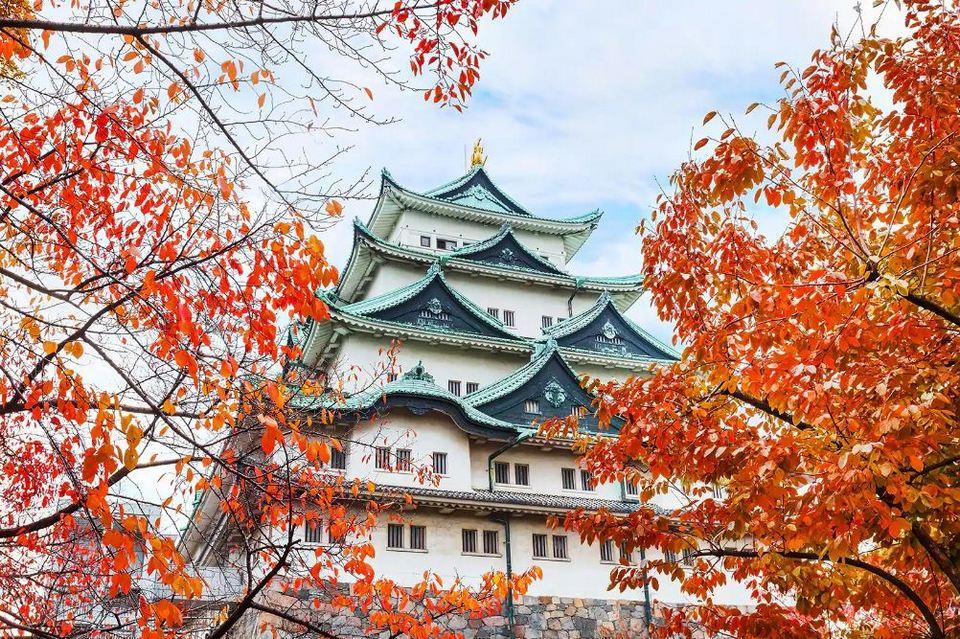 nagoya castle in fall,nagoya travel blog