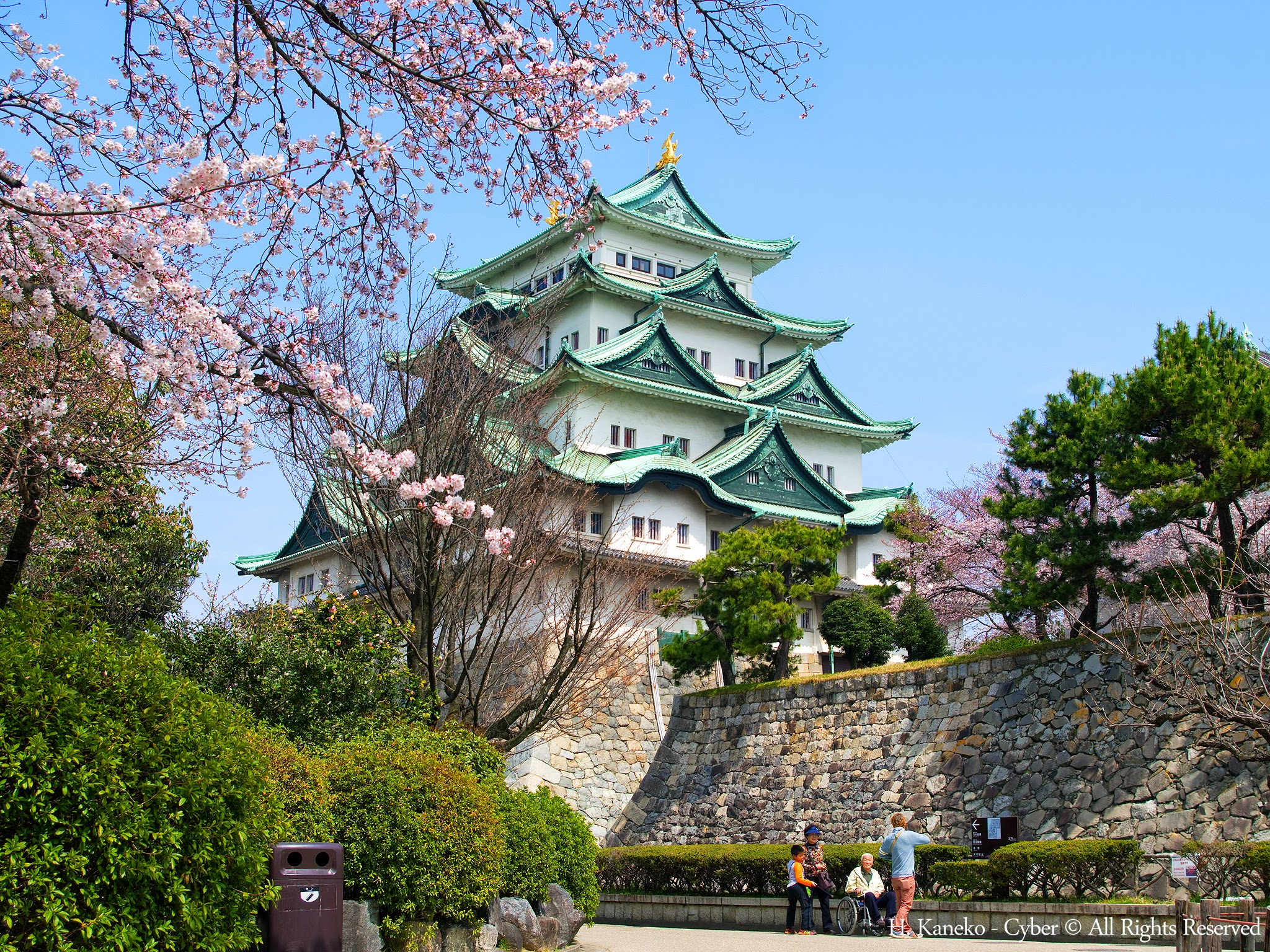 nagoya_Castle_with_Cherry_blossoms