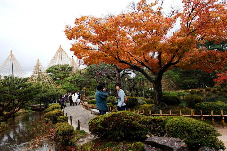 kanazawa autum fall,kanazawa travel blog (1)