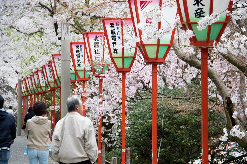 kanazawa in springtime