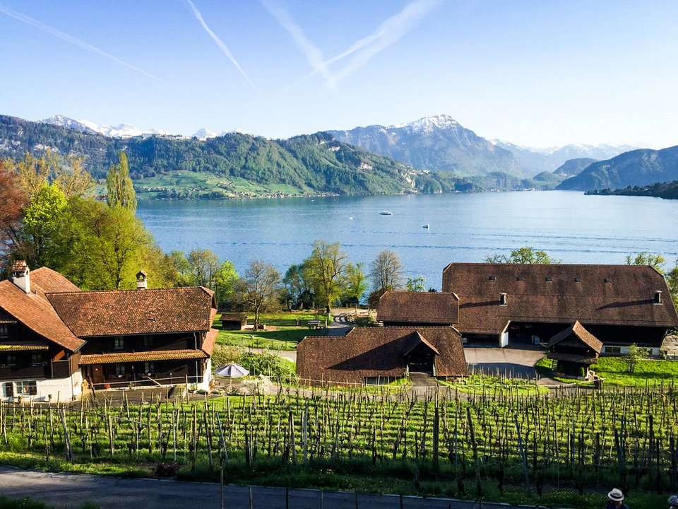 meggenhorn-castle-vineyard-lake-lucerne-switzerland