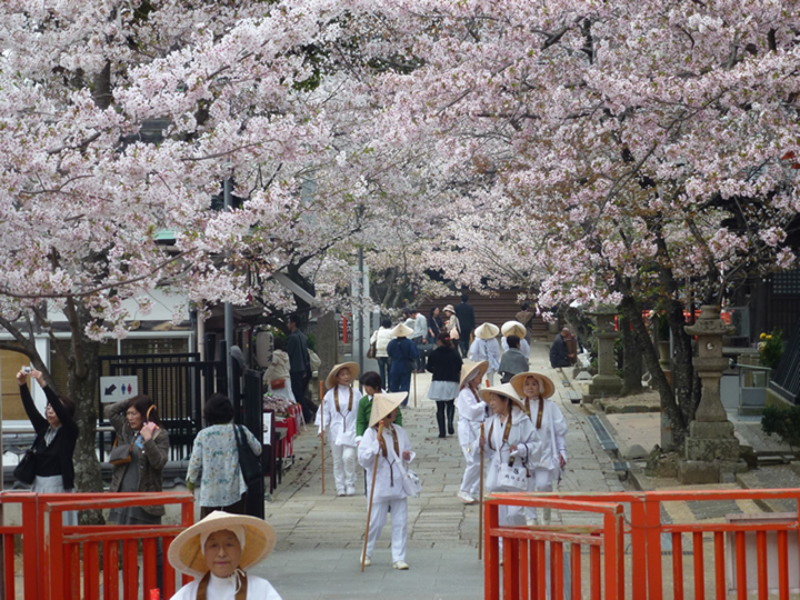 Kimii-dera Temple,wakayama travel guide,wakayama travel blog