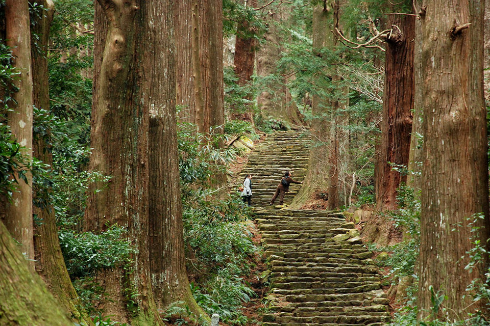 Kumano Kodo Daimon-zaka Walking (1)