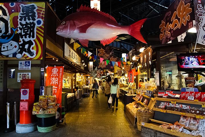 wakayama-city marine (1)
