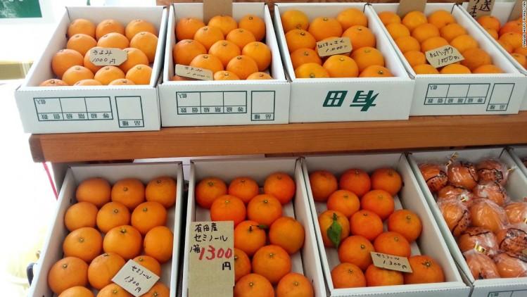 wakayama-fruits_750_422