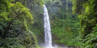 best bali waterfalls3