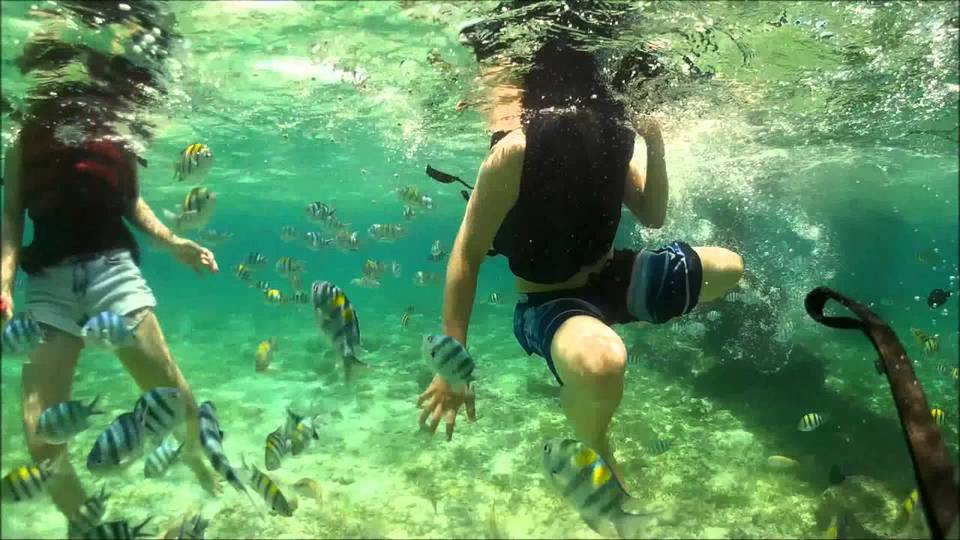 Nalusuan Island,3 days in cebu,cebu itinerary 3 days,cebu itinerary 3 days 2 nights,cebu trip itinerary,what to do in cebu for 3 days (1)