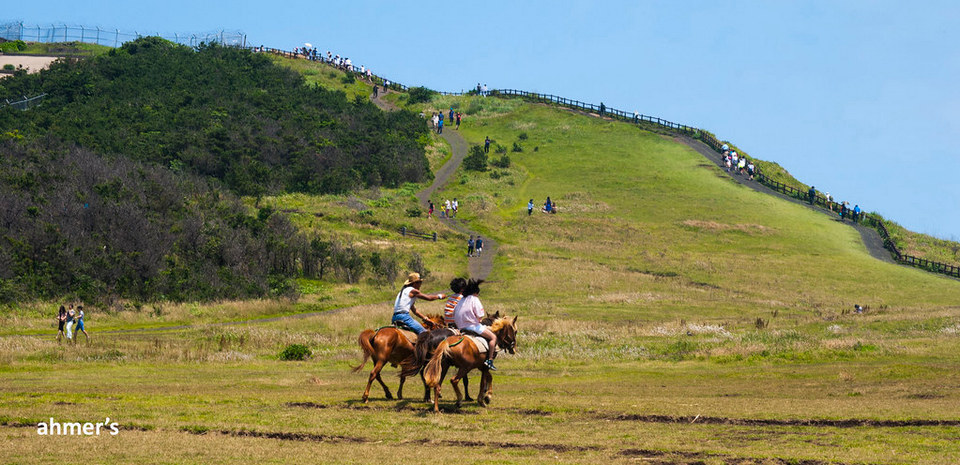 Horse ride in Udo Island