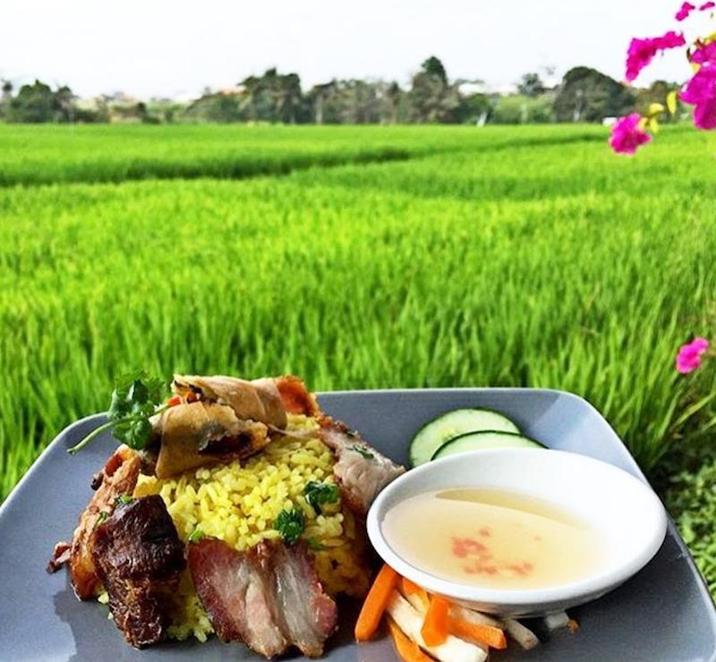 rice fields bali things to do,canggu blog,canggu guide,canggu travel guide,things to do in canggu blog