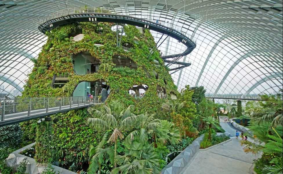 1gardens by the bay blog,gardens by the bay singapore,how to visit gardens by the bay,gardens by the bay guide