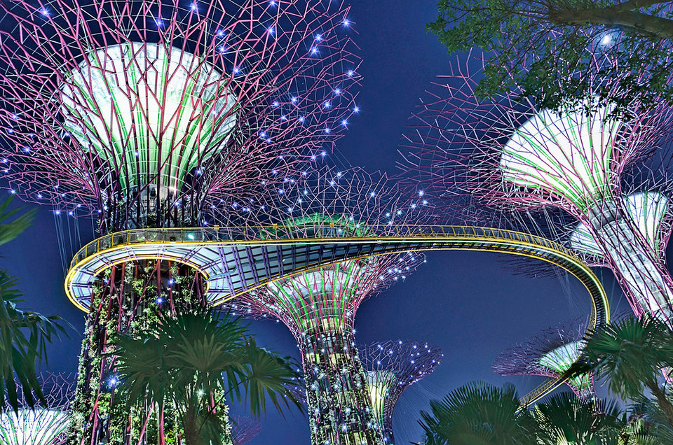 Cluster of Supertrees with OCBC Skyway