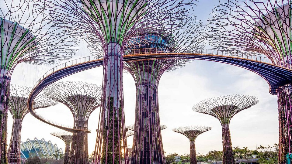 OCBC Skyway,,gardens by the bay blog,gardens by the bay singapore,how to visit gardens by the bay,gardens by the bay guide singapore 11