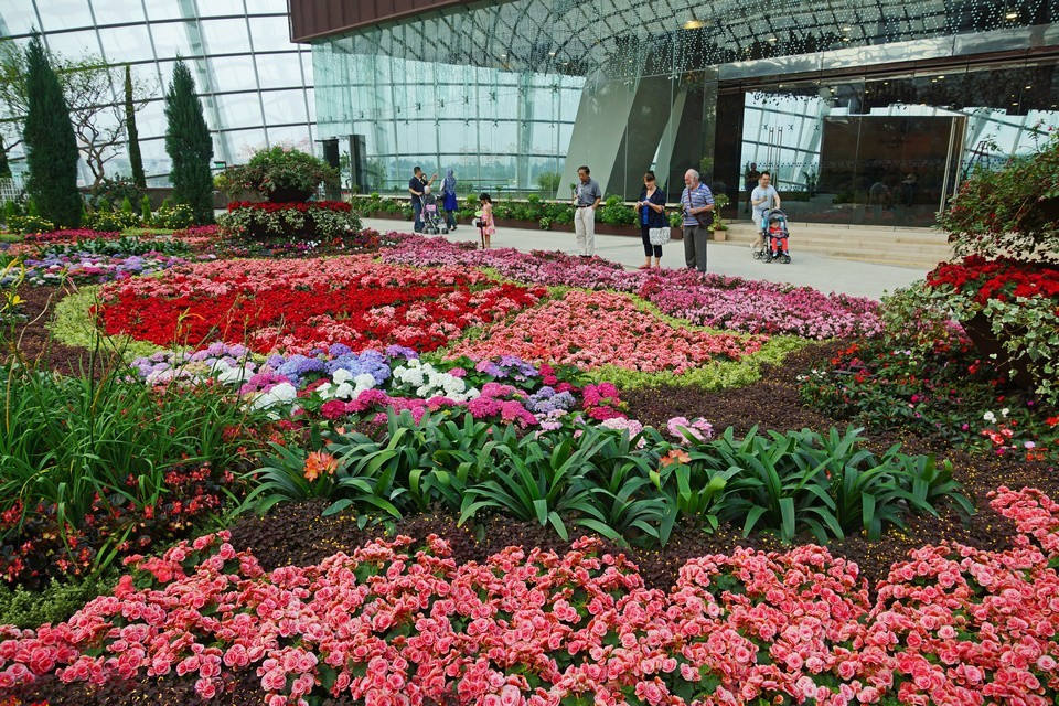 The Flower Dome,gardens by the bay blog,gardens by the bay singapore,how to visit gardens by the bay,gardens by the bay guide (4)