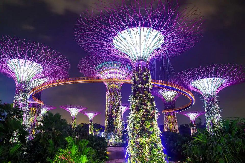 gardens by the bay blog,gardens by the bay singapore (1)