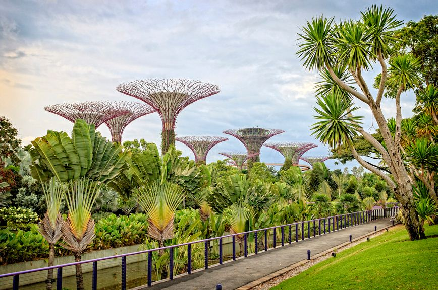 gardens by the bay blog,gardens by the bay singapore,how to visit gardens by the bay,gardens by the bay guide (1)