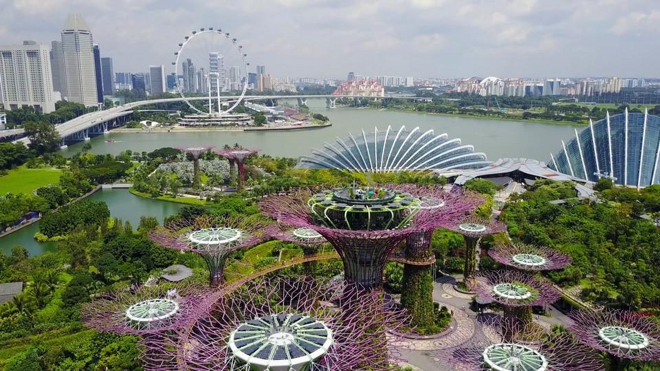 supetree glove,gardens by the bay blog,gardens by the bay singapore,how to visit gardens by the bay,gardens by the bay guide (1)
