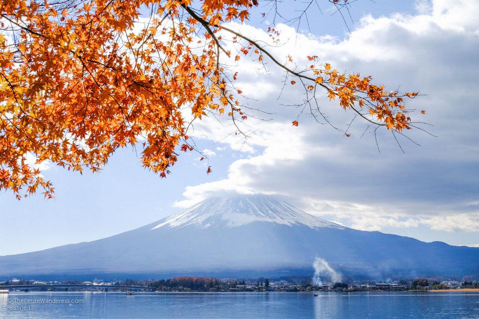 autumn kawaguchiko