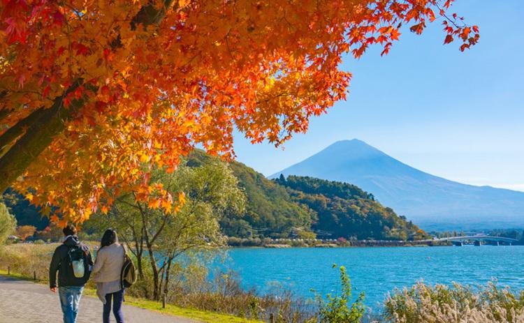 around the lake kawaguchi