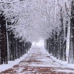 Korea winter travel blog — Some useful tips, top things to do & best places to travel in Korea in winter