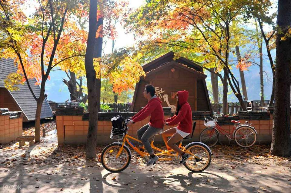 cycling nami island blog,nami island guide,nami island one day tour,nami island travel blog (5)