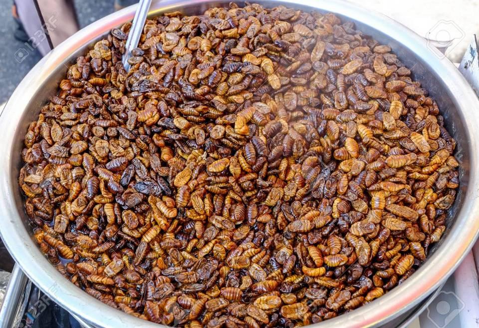 Beondegi (Crunchy Stir-fried Silkworm Pupae) (1)