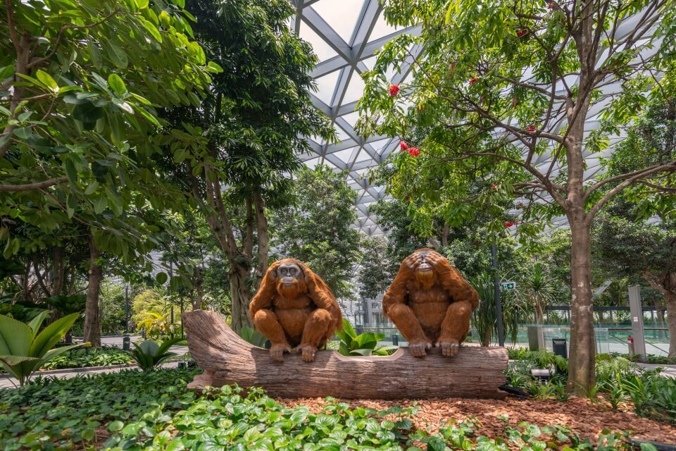 Jewel Changi,what to do in jewel changi,jewel changi airport review,things to do in jewel changi