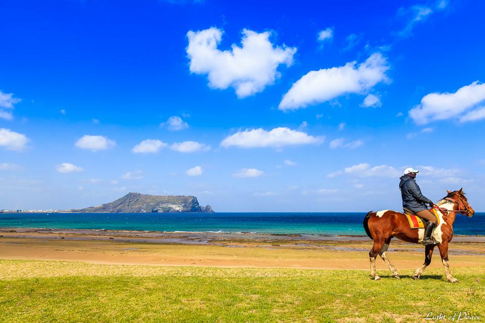 jeju horseback riding (1)