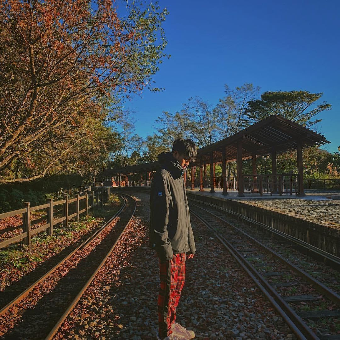 1Alishan Forest Railway taiwan (3)