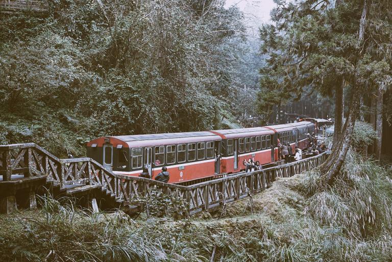 Alishan Forest Railway (1)