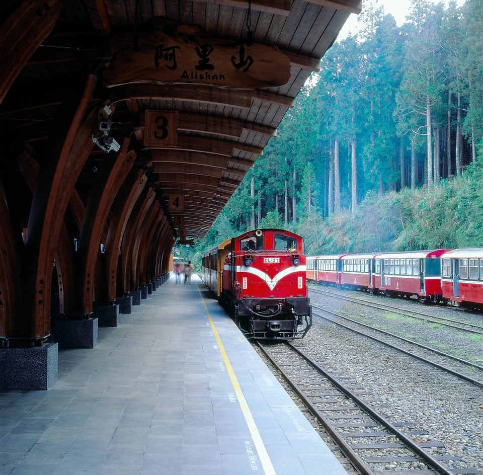 Alishan Forest Railway taiwan (1)