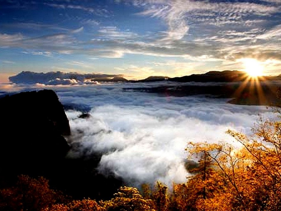 Alishan National Scenic Area,alishan autumn (1)