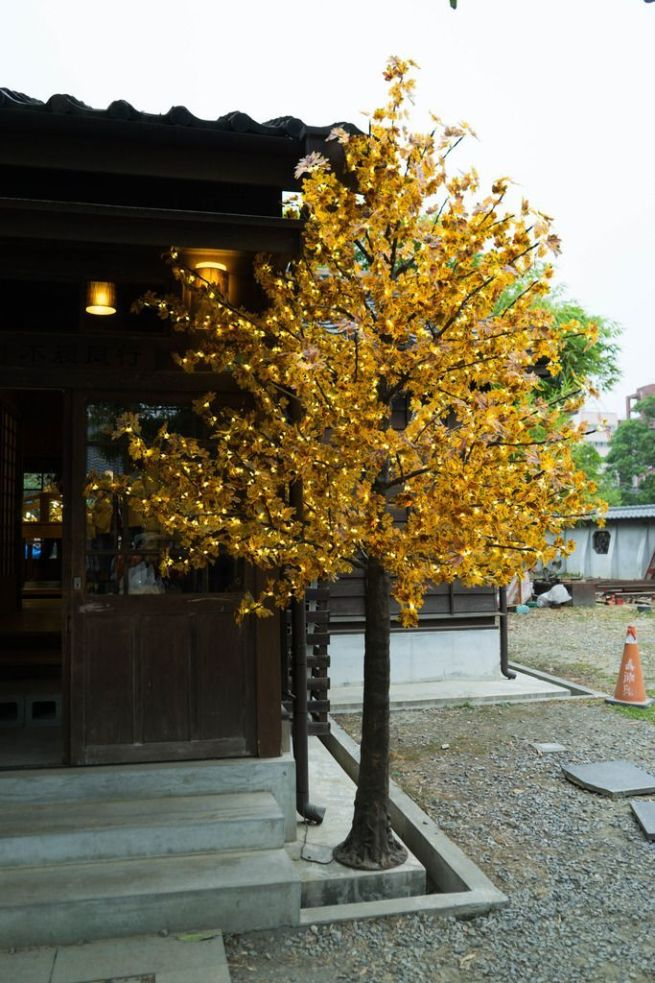 Hinoki-Village-alishan autumn