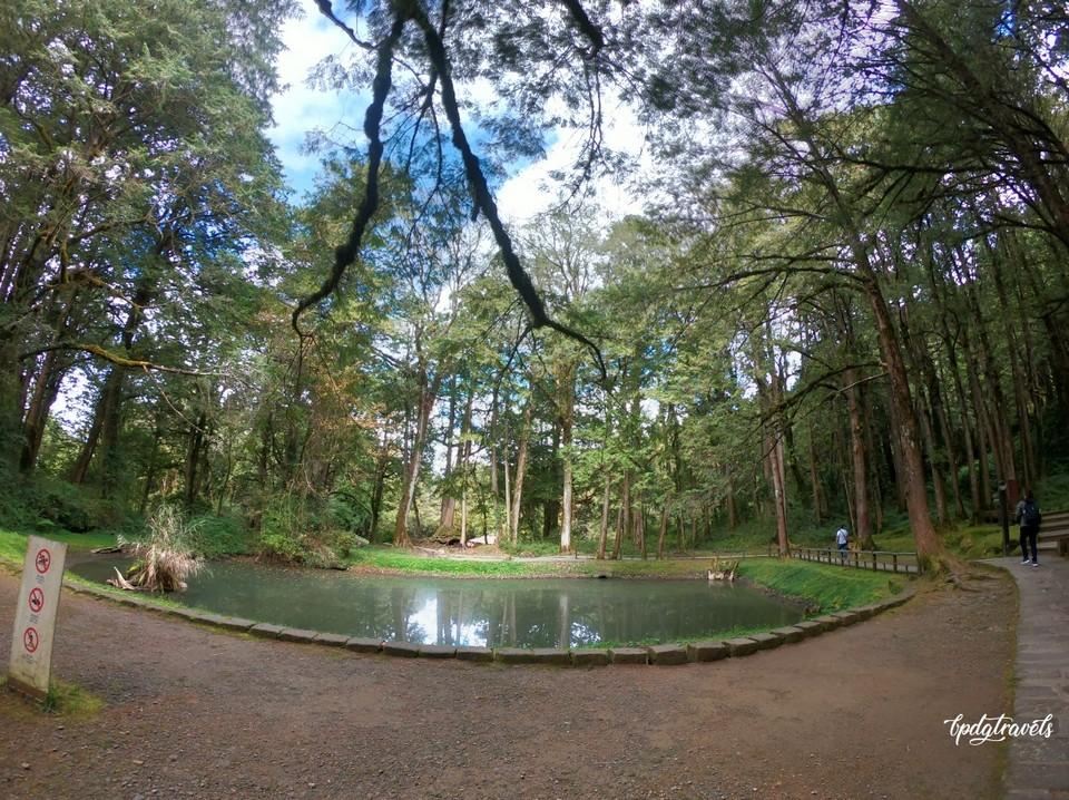 sisters pond alishan (1)