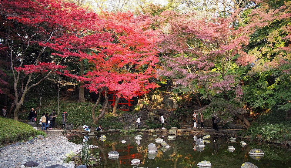 Autumn pond at Rikugien Garden