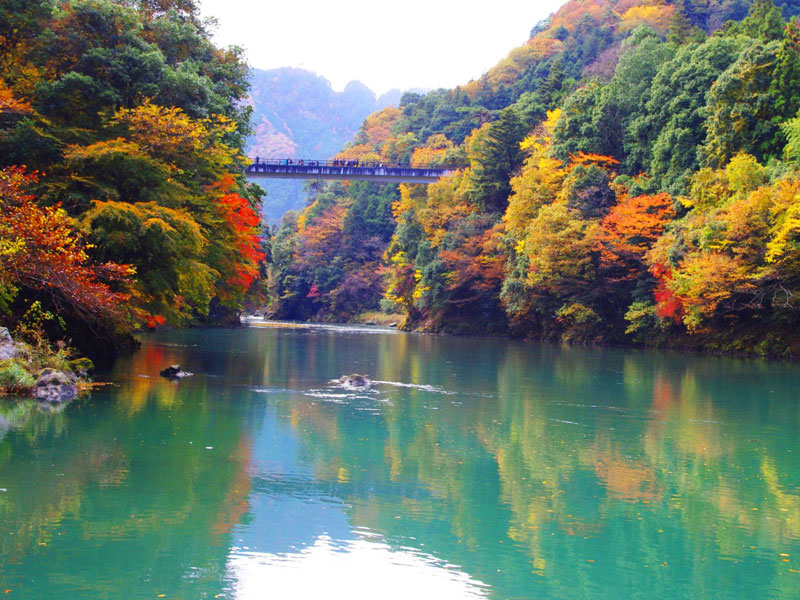Lake Okutama autumn (1)