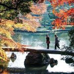 Where to see autumn leaves in Tokyo? — 13 best autumn spots in Tokyo & best place to see autumn leaves in Tokyo