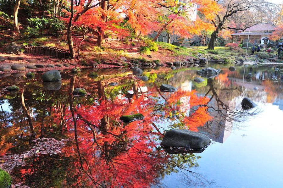 koishikawa korakuen garden autumn (1)